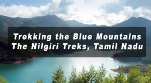 the Blue Mountains, The Nilgiri Treks, Tamil Nadu