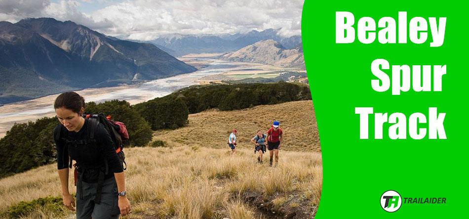 Bealey Spur Track – Best Treks in New Zealand